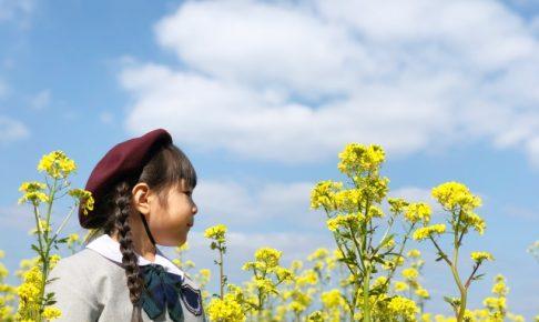 幼稚園生活への不安